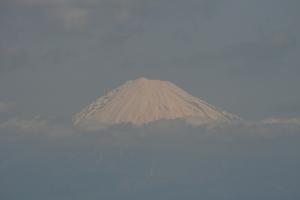 nihondaira-fuji.jpg